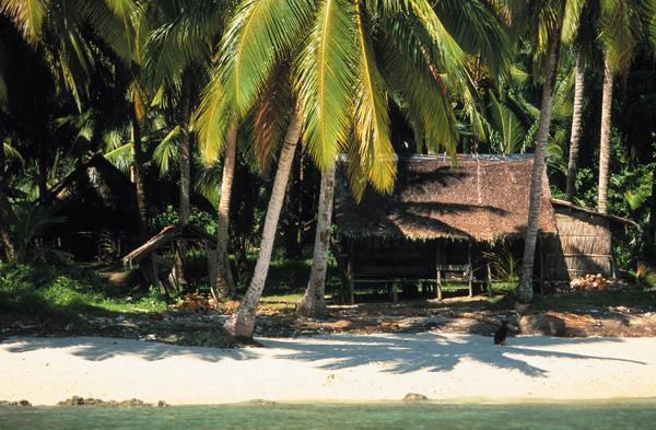 A typical Mentawai island shack.