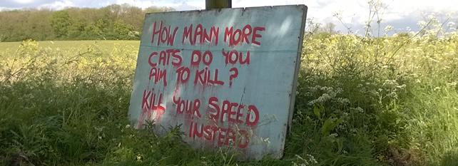 dontkillmycats